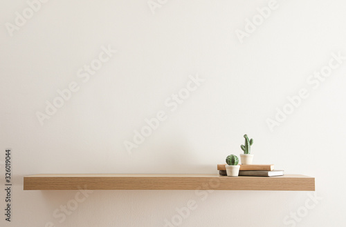 Wooden shelf with books and decorative cactuses on light wall Canvas Print