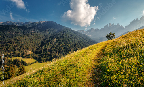 Wall mural - Scenic image of Dolomites mountains meadow. Sunset in the mountain valley. Beautiful natural landscape in the summer time. Creative image. Instagram filter.