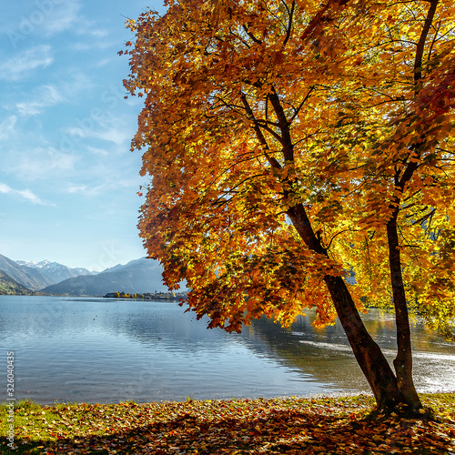 Wall mural - Landscape with Alps and Zeller See in Zell am See, Salzburger Land, Austria. Beautiful Sunny day in Alps. wonderlust view of highland lake With autumn trees under sunlight and perfect sky.