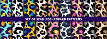 Trendy Leopard Seamless Pattern Set. Hand Drawn Fashionable Wild Animal Skin Color Texture Collection For Print Design, Fabric, Textile, Wrapping Paper, Background, Wallpaper. Vector Illustration