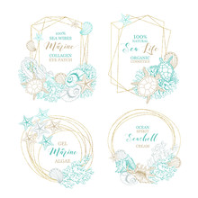 Seashell And Marine Algae Cosmetics Package Labels, Vector Modern Premium Golden Frames Design. Ocean Seashell And Sea Minerals Body Care Product, Corals And Starfish In Gold Foil Circle Wreath