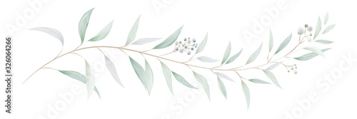 Watercolor eucalyptus leaves and branches Wallpaper Mural