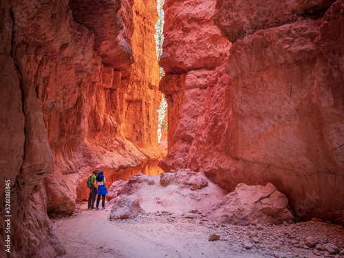 Fototapeta The Bryce Canyon national park in Utah, United States. Bryce is a collection of giant natural amphitheaters distinctive due Hoodoos geological structures obraz