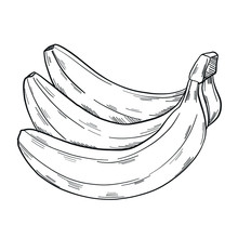 A Bunch Of Banana In Clip Art ...