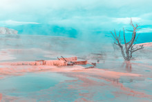 Moody, Foggy Hot Spring Pool, Mammoth Hot Springs, Yellowstone National Park