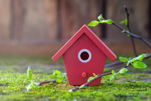 Miniature Red Wooden Bird House, Tree Branches With Fresh Leaves, Spring Easter Background.