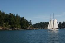 Large Sailboat Along A Green Lakeside