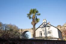 Knaresborough Railway Viaduct Winter View