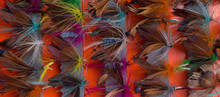 Imitation Of A Set Of Butterflies And Insects, For Fishing, Close-up