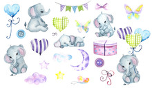Watercolor Hand Painted Cute E...