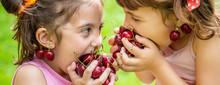 Children Eat Cherries In The S...