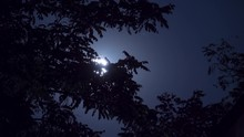 Full Moon Moves In The Night S...