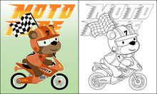 Cartoon Of Bear The Funny Motor Racer Carrying Finish Flag, Coloring Book Or Page