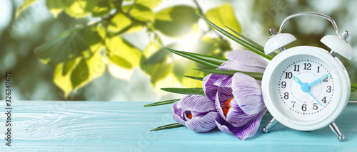 Fototapeta White alarm clock and flowers on blue wooden table against blurred background, space for text. Spring time obraz