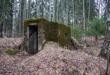 Stone Bunker Overgrown With Moss In The Forest On A Cloudy Spring Day.