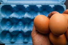 Macro Close Up Of Fresh Organic Eggs In Studio