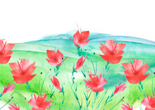 Watercolor Painting. Red, Pink Poppy Flower, Tulip, Wildflower Painted By Watercolor. Garden Flowers, Glade.Hand Drawn Watercolor Floral Illustration, Logo. Summer Landscape. Abstract Paint Splash.