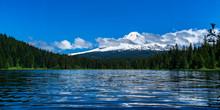 Scenic Landscape Of Trillium L...
