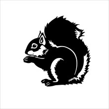 Squirrel Icon On A White Backg...