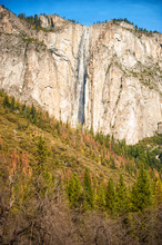 Vertical Scenic Landscape With...