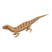 Brown Striped Lizard Icon. Iso...