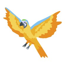 Flying Gold Parrot Icon. Isome...