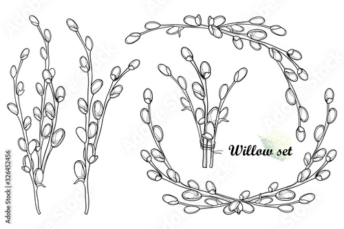 Fotografie, Obraz Set with outline Willow twigs and bunch in black isolated on white background