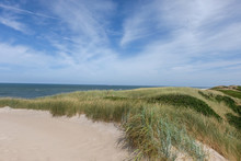 Typische Nordische Dünenlandschaft In Der Nähe Des Strandes Mit Blick Auf Das Meer -  Selektiver Fokus