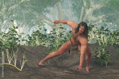 Cuadros en Lienzo Tarzan in the Jungle