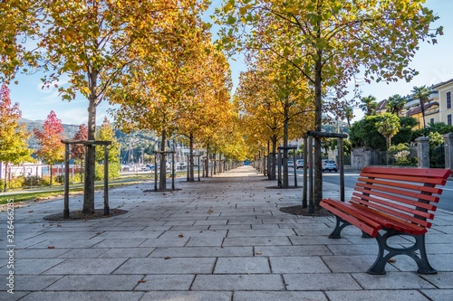 Valokuvatapetti Luino: the walk under the trees