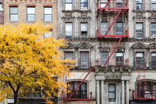 New York City Fall Street Scene With Golden Tree In Front Of Old Building In The East Village