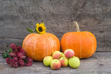 Autumn Gardening Composition. Two Orange Pumpkins, Heap Of Ripe Apples And Buch Of Red Chrysanthemums On Old Non Paint Wooden Background. Space For Text
