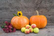 Autumn Gardening Composition. ...