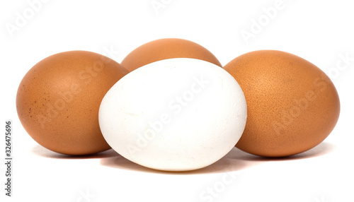 fresh chicken eggs isolated on a white background Canvas Print