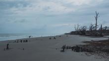 Dramatic Overcast Gloomy Day On Driftwood Beach, Jekyll Island, Georgia...