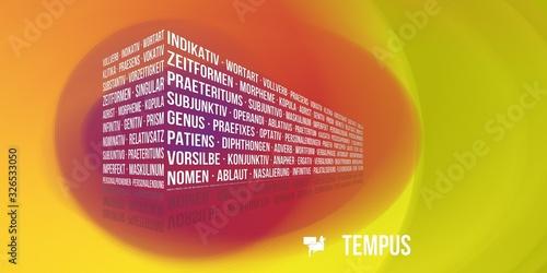 Tempus Canvas Print