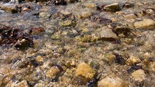 Water Flows Over Stones In A Mountain River