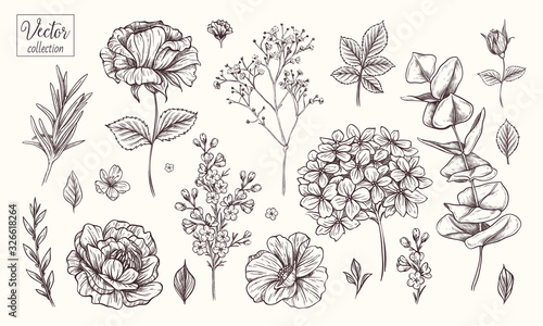 Vector collection of hand drawn flowers Tableau sur Toile