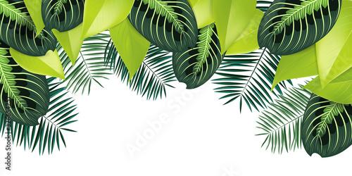 Spring illustration background