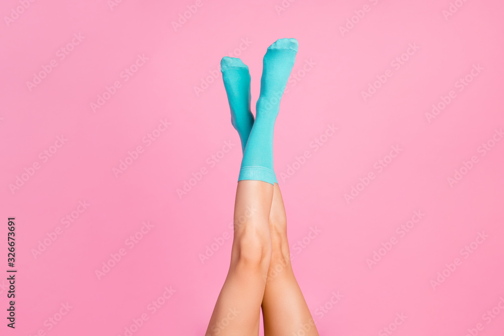 Fototapeta Cropped view of nice crossed attractive lovely long prefect slender healthy legs wearing bright blue soft comfortable socks isolated over pink pastel color background
