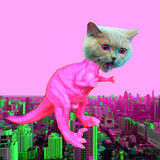 Contemporary funny art collage.  Monster cat dinosaur in the city