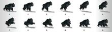 Gorilla Run Cycle Animation Fr...