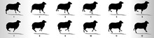 Sheep Run Cycle Animation Frames, Loop Animation Sequence Sprite Sheet
