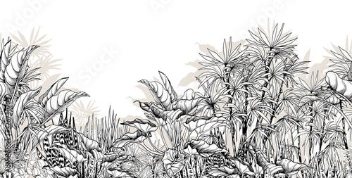 Obrazy czarno białe  tropikalny
