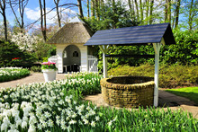 Small Cottage And Wishing Well Surrounded By Spring Daffodil Flowers At Keukenhof Gardens, Netherlands