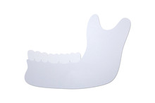 Lower Human Jaw Or Mandible, P...