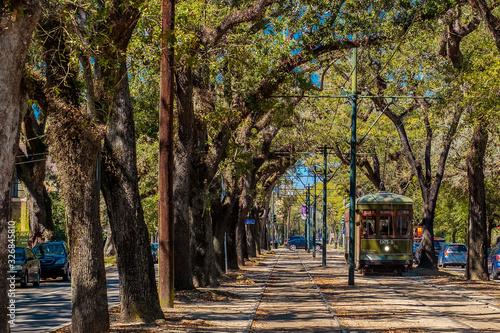 New Orleans Street Car in the Live Oak Trees Fototapeta