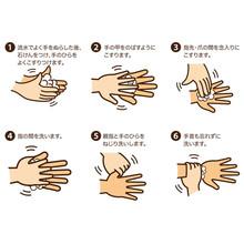 手洗い 手順