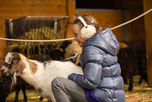 Little Girl Petting Friendly G...