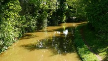 Idyllic Scene On The Oxford Canal With Spring Growth